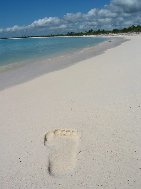 Le bonheur - Le bonheur est sur la plage
