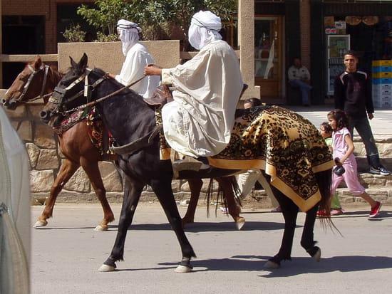 مدينة خنشلة ... معلومات عامة شاملة Rues-khenchela-algerie-1402281667-1111467