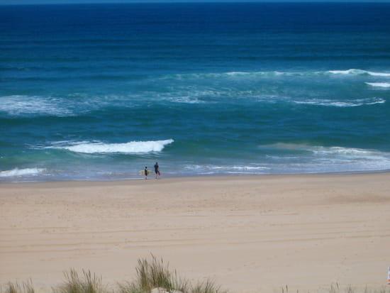 surf-pagode-plages-vieux-boucau-france-3418847919-877945