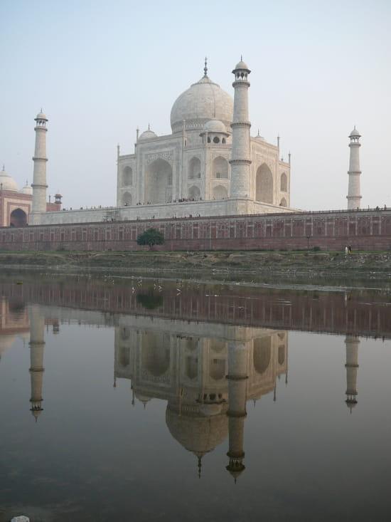الهند ..جمال و حضارة من مختلف انواعها .. Temples-agra-inde-1870843769-923008
