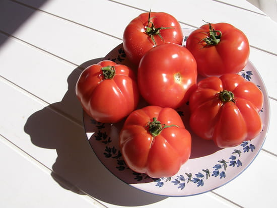 http://image-photos.linternaute.com/image_photo/550/tomates-aups-france-8010522724-944304.jpg
