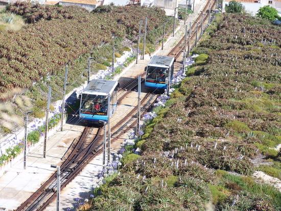 Ascenseurs de Nazaré - Pour relier le bas et le haut de Nazaré, il vaut mieux emprunter les ascenseurs...