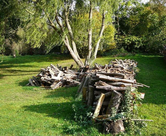 Provision de bois pour l 39 hiver par jacqueline dubois sur l 39 internaute - Couvrir arbuste pour l hiver ...