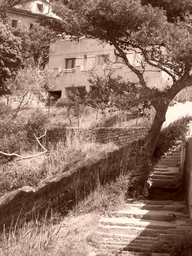 Le jardin secret par edwige oudot sur l 39 internaute for Le jardin secret chicha