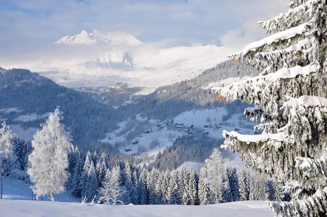 Paysages de montagne. 1370570