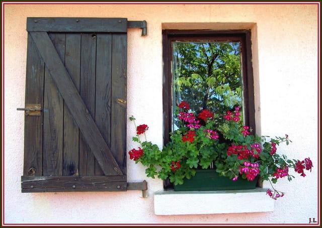 Fen tre fleurie par janine laval sur l 39 internaute for Norbec fenetre laval