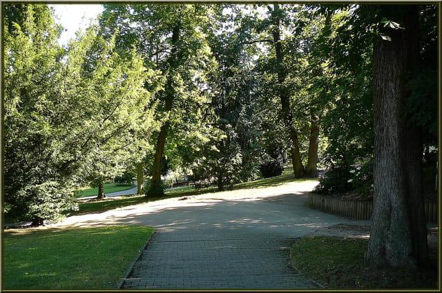 Ombre et lumière au jardin botanique - 1 par Jacqueline ...
