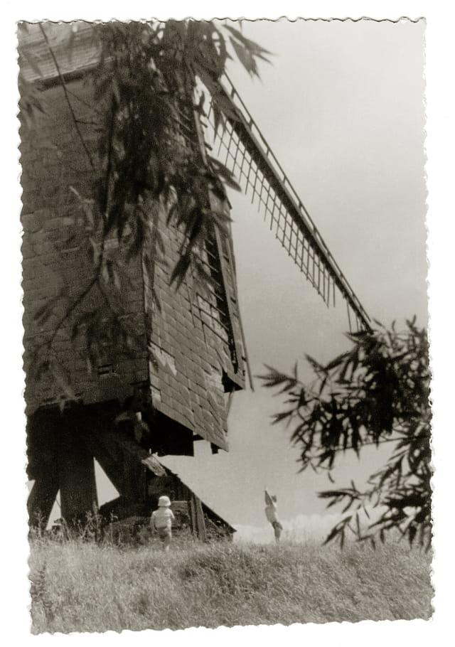 Les moulins 1577199