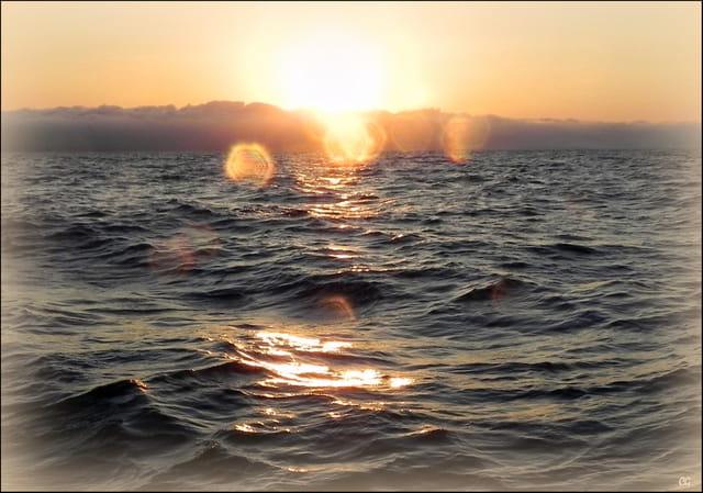 Le soleil 1630249