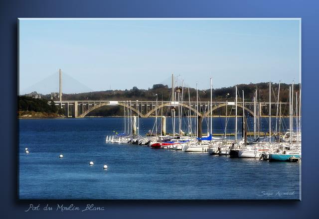 Le port du moulin blanc par serge agombart sur l 39 internaute - Le port du moulin champtoceaux ...