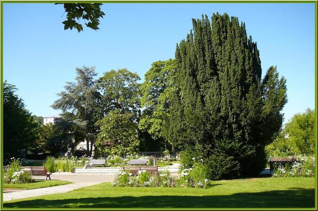 Ombre et lumière au jardin botanique - 9 par Jacqueline ...