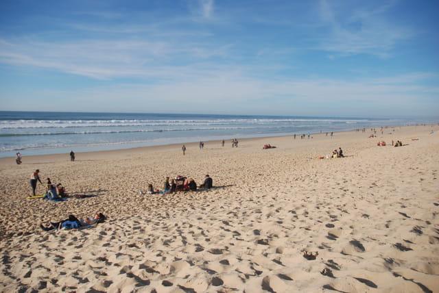 la plage en novembre biscarrosse plage par genevieve lapoux sur l 39 internaute. Black Bedroom Furniture Sets. Home Design Ideas