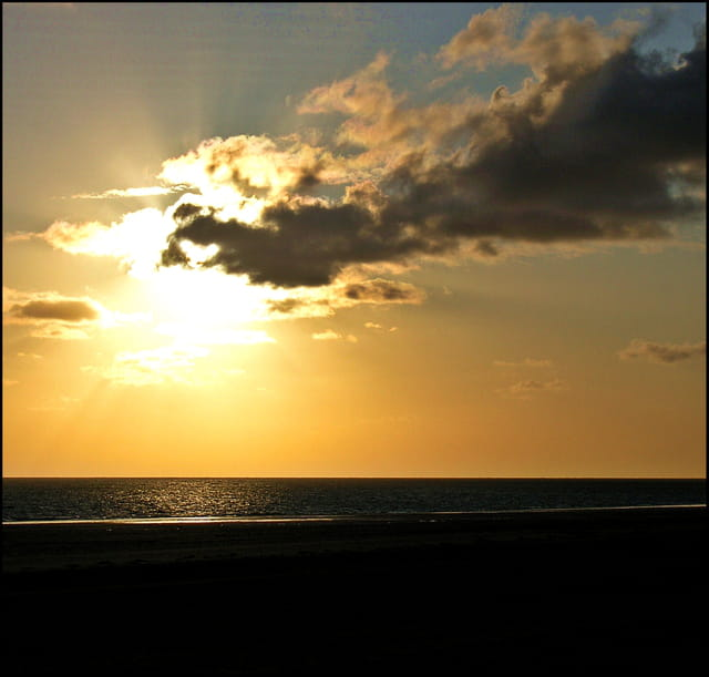 Le soleil 1649819