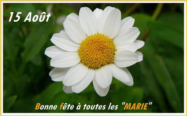 15 ao t bonne f te par jacqueline dubois sur l 39 internaute for Castorama 15 aout