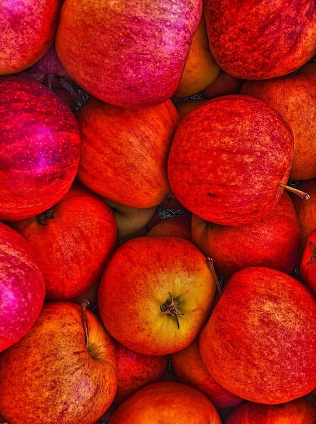 La pomme 1590867