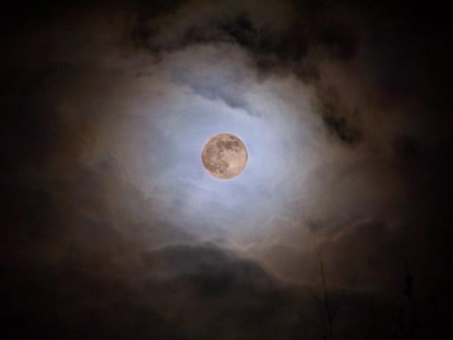 12 décembre 2008 - La lune à son périgée
