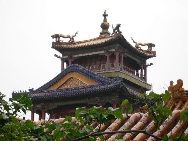 Pavillon de la pluie et des fleurs (Cité Interdite - Chine)