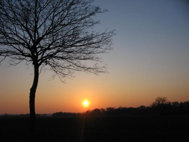 Coucher de soleil sur la campagne par eliane degardin sur l 39 internaute - Coucher de soleil marseille ...