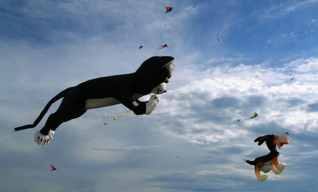 7 e festival de cerfs volants