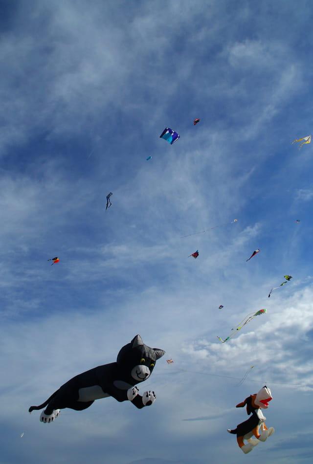 7e festival de cerfs volants