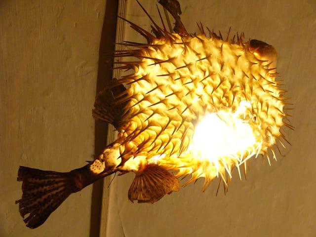 Abat-jour en poisson volant