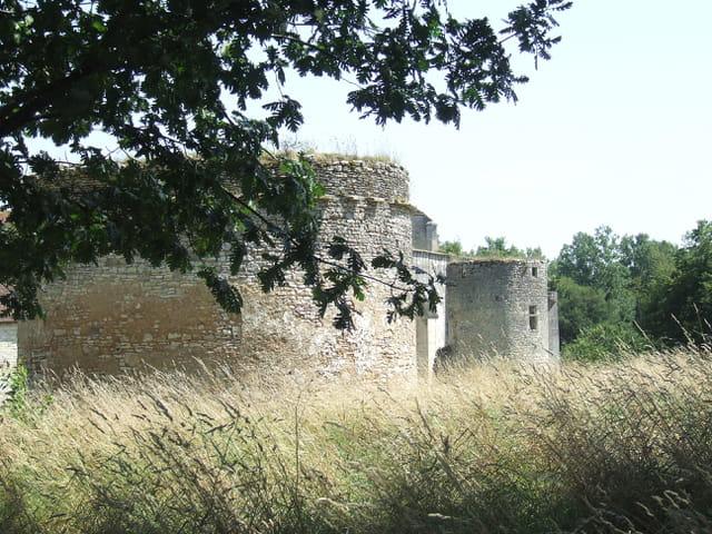Abbaye dans le champs