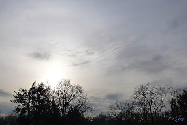 abonnée au gris, recherche...