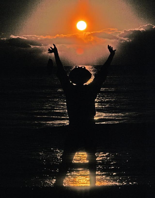 Adoratrice du soleil