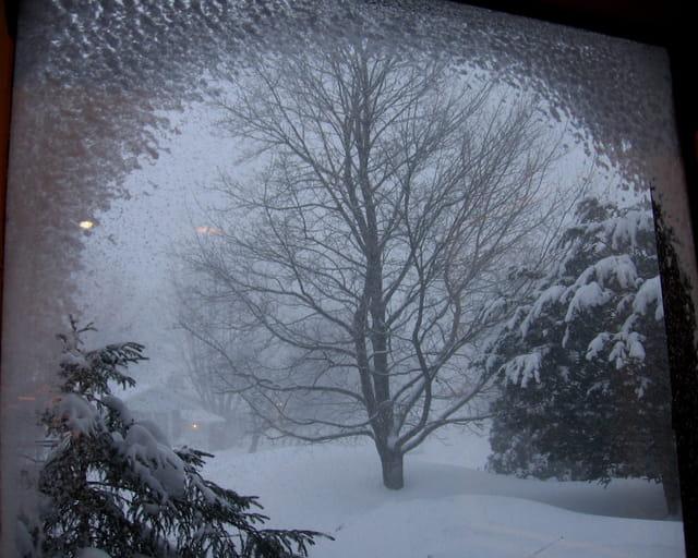 Ah! comme la neige a neigé......