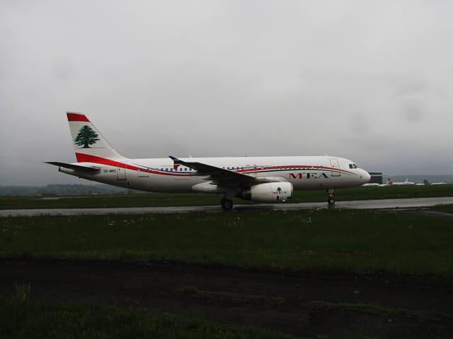 Airbus A320 à l'aéroport Tarbes-Lourdes