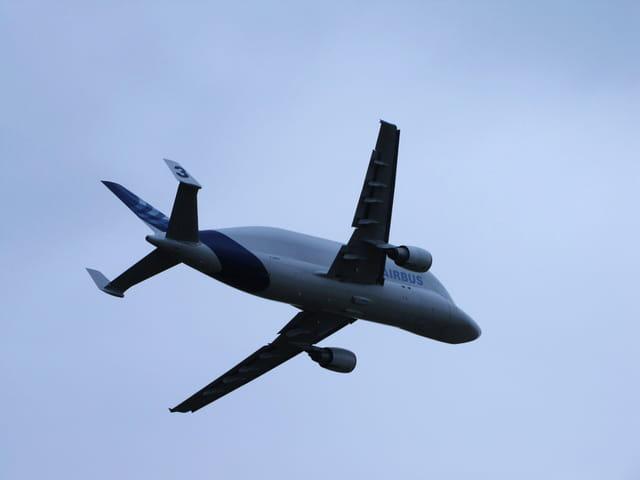 Airexpo - Muret - Airbus Beluga