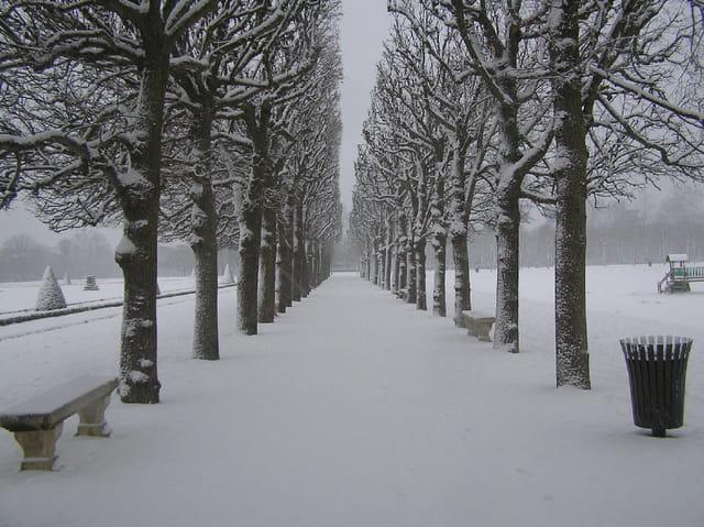 Allée sous la neige