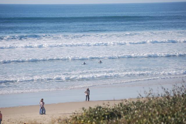allons surfer dans Les Landes en novembre