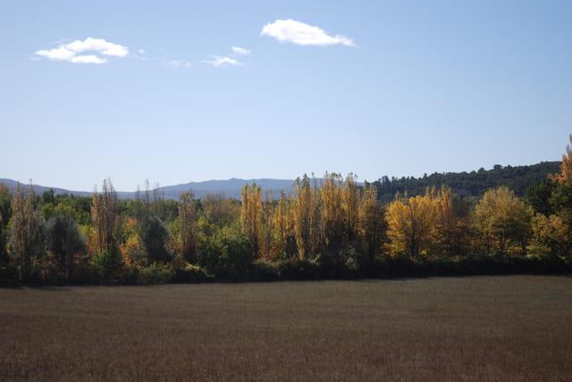 Alpes de Haute Provence en automne
