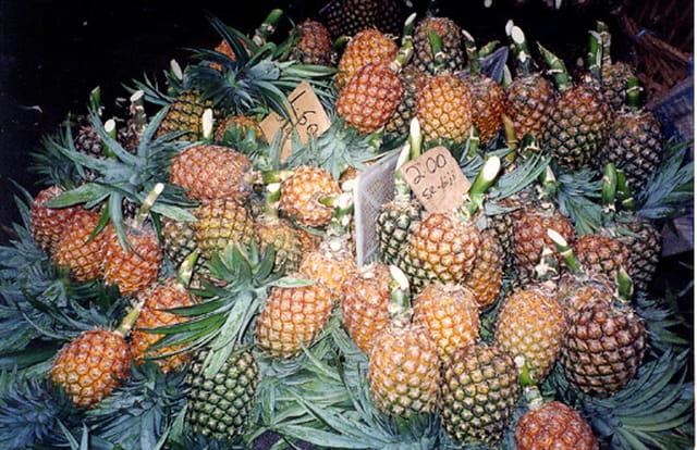 Ananas à la vente