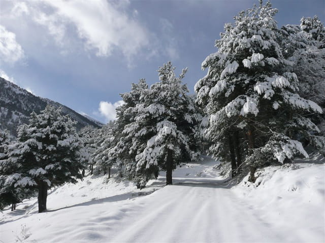 Un chemin de montagne et la neige