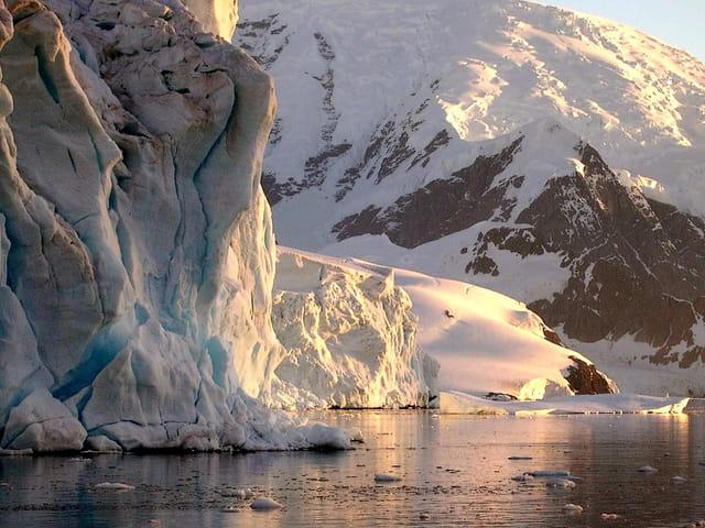 Antarctique 64