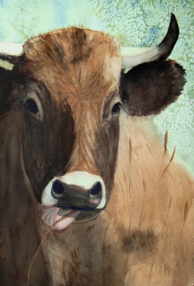 Aquarelle d'une vache en Aubrac