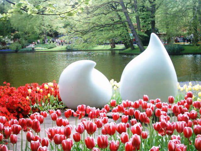Art & fleurs