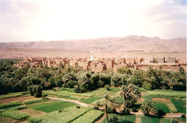 Atlas, ksar et oasis