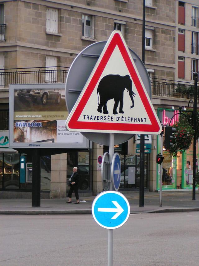 Attention traversée d\'éléphant