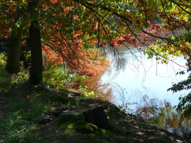 Au bord de l'eau à l'automne