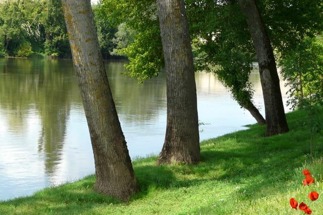 Au bord de la Dordogne.
