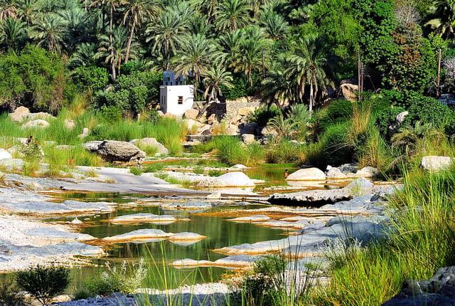 Au coeur du Wadi Tiwi