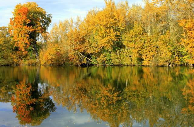 Au fil de l'eau, l'automne