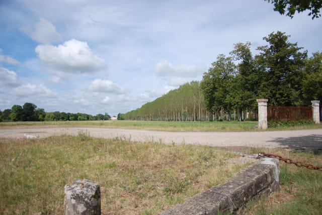 au loin le château viticole qui donne sur la Gironde