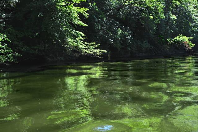 au milieu de la rivière Espérance