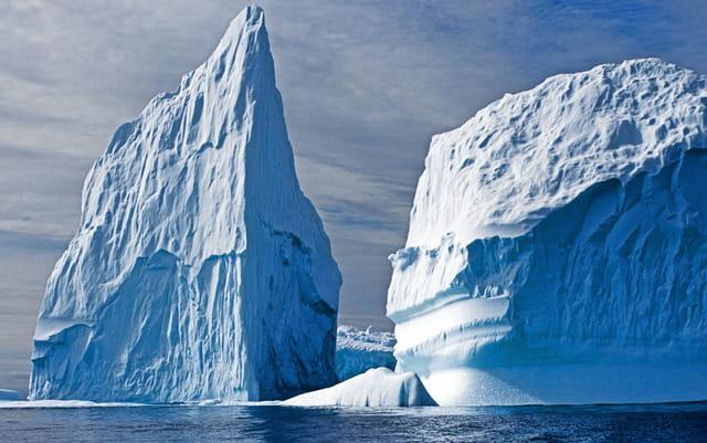 Au plus près des icebergs