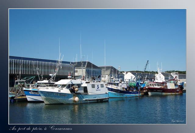Au port de pêche