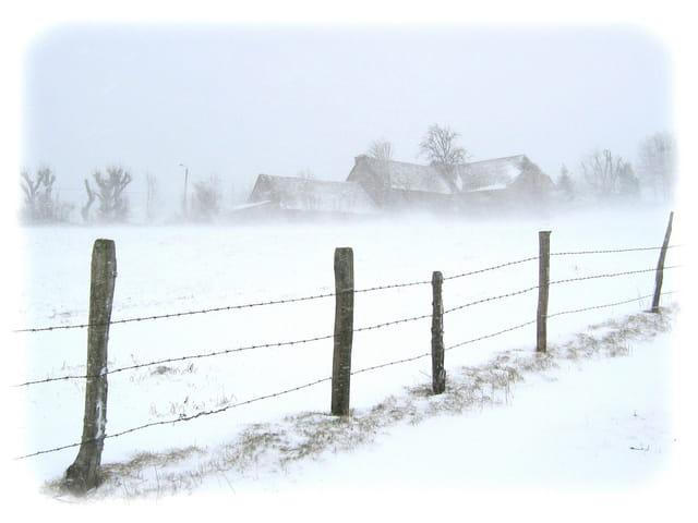 Aubrac - tempête de neige